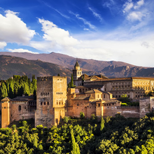florist near you in Granada